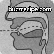 音标[ɔ:]怎么读 发音技巧 英语发音 第1张