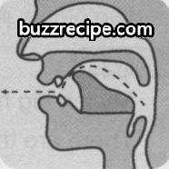 音标[ts]怎么读 发音技巧 英语发音 第1张