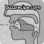 音标[l]怎么读 发音技巧 英语发音 第1张